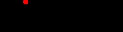 Wieczorex logo